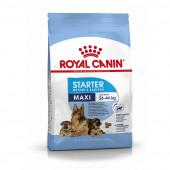 Royal Canin 4 кг Maxi Starter mother&babydog для щенков крупных пород, беременных и кормящих сук