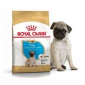 Royal Canin 1,5 кг Pug junior для щенков породы мопс до 10 месяцев